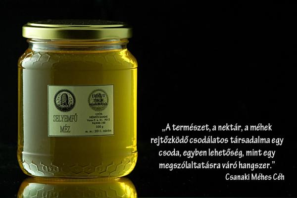 Csanaki Méhes Céh - Selyemfű méz termékfotó