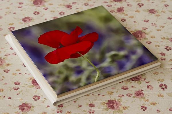 15x15 cm- es fotócsempe könyvborítóként